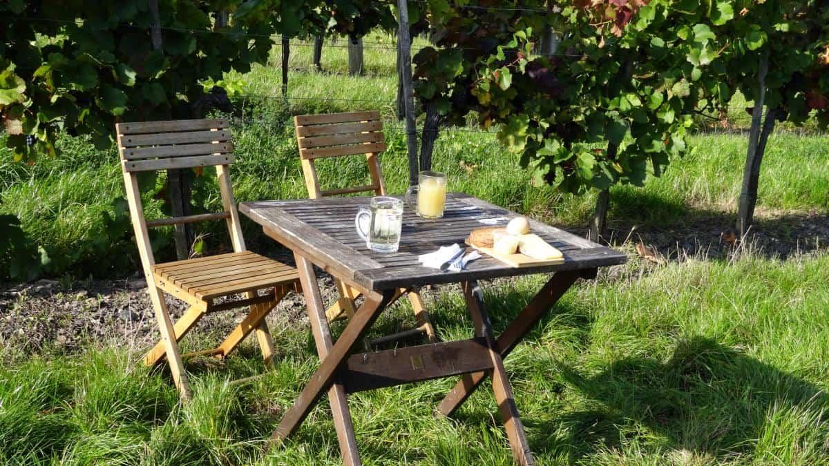 Brotzeit beim Weinwandertag in Wien