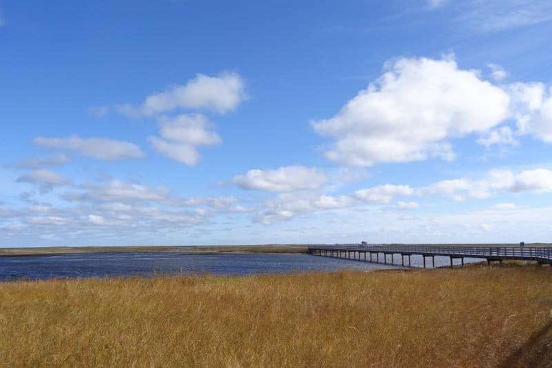 Holsteg über das Meer und die Salzwiesen