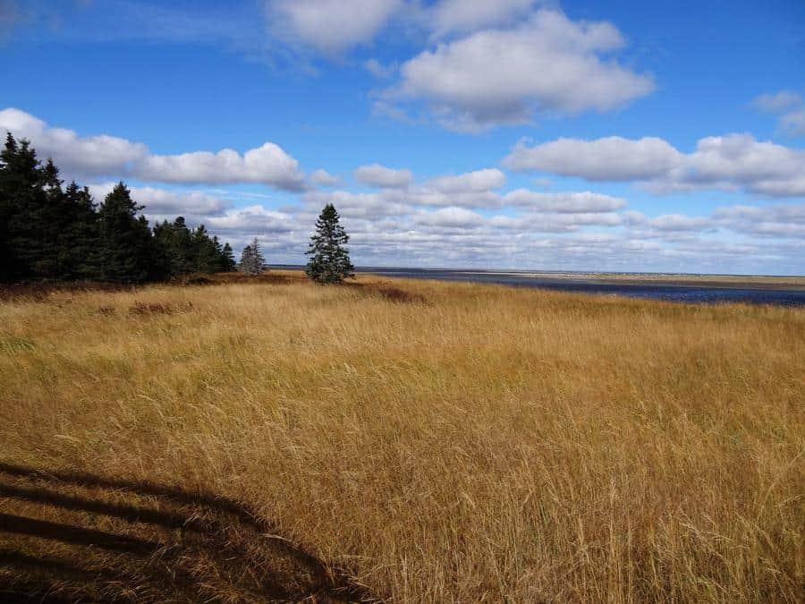 Kanada - Kejimkujik National Park