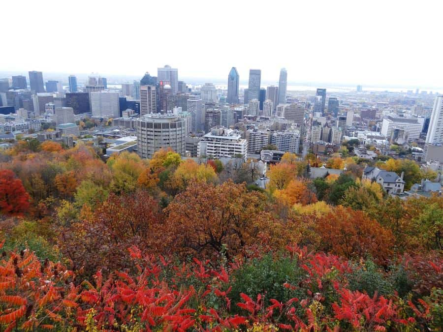 Kanada - Montreal