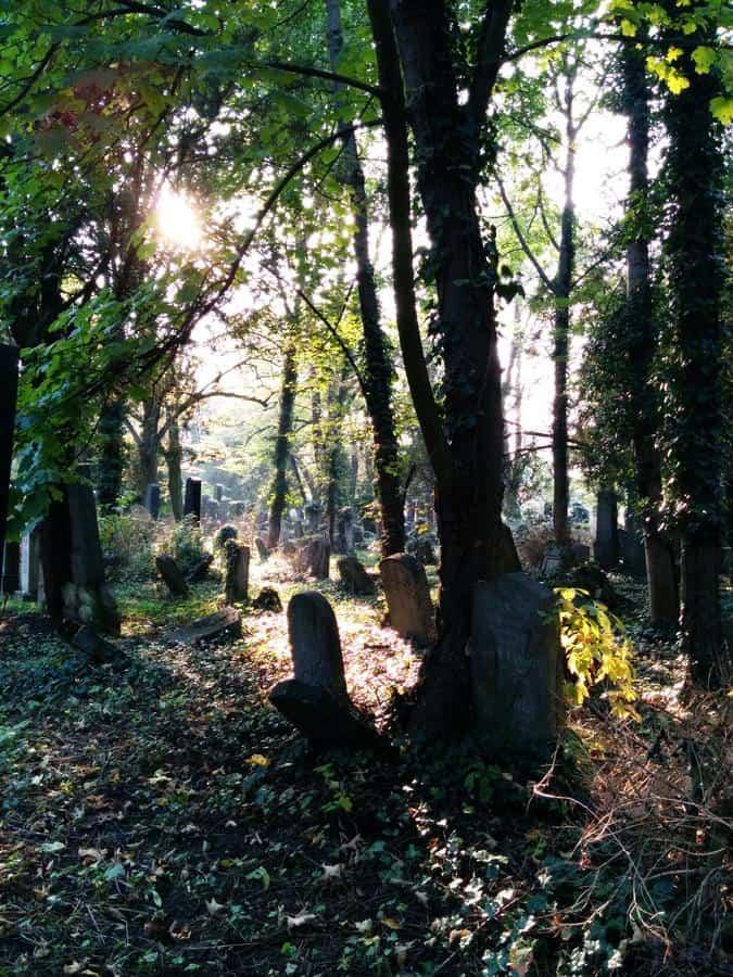 Wien - Jüdischer Friedhof