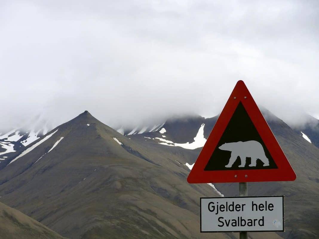 Spitzbergen - Eisbärenschild