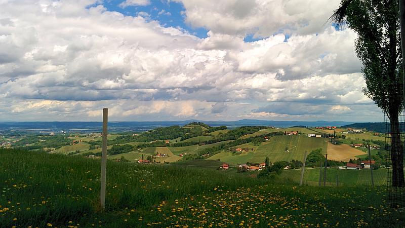 Aussicht in der Südsteiermark