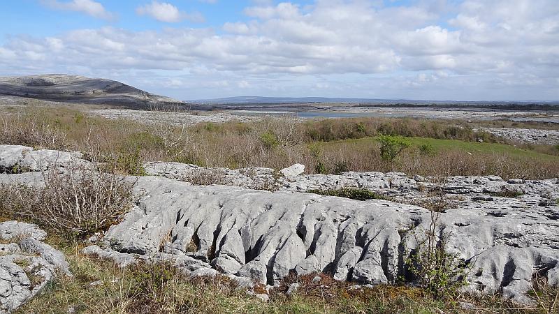Felsrücken im Burren National Park