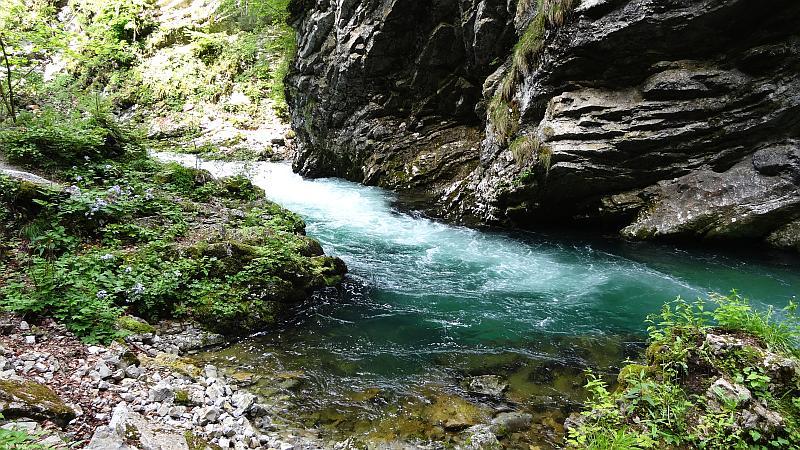 Slowenien - Stromschnelle in der Vintgar-Klamm