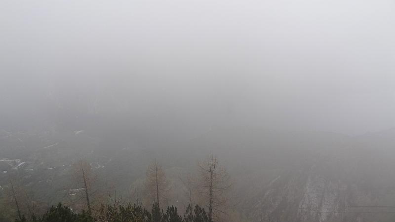 """""""Aussicht"""" vom Vogel"""