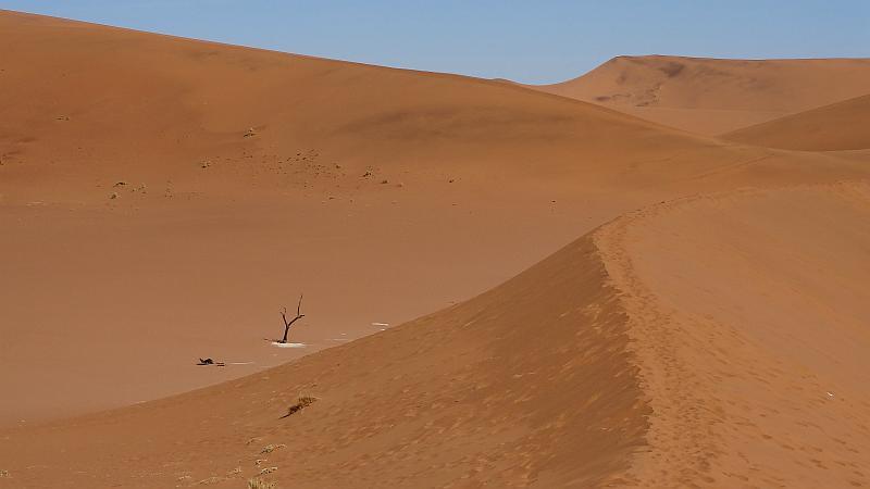 Sanddünen im Sossusvlei