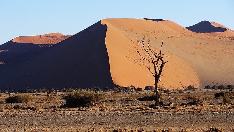 Dünenschatten im Namib-Naukluft-Park