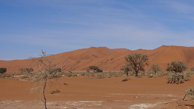 Rostflecken auf den Dünen im Sossusvlei