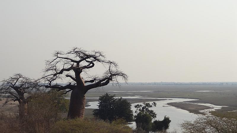 Grenzübergang Chobe