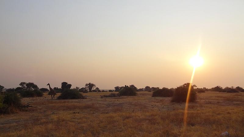 Sonnenaufgang im Chobe-Nationalpark