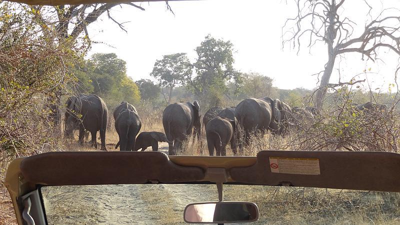 Straßensperre im Bwabwata-Nationalpark