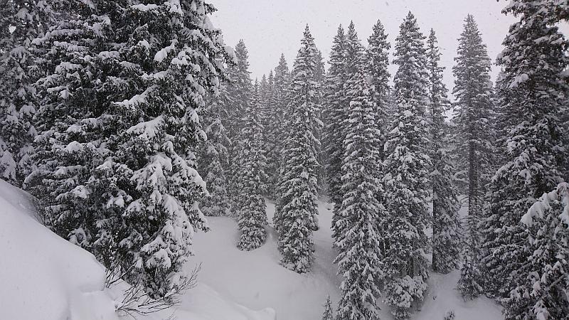 Märchenwald in Lech - Ski Arlberg