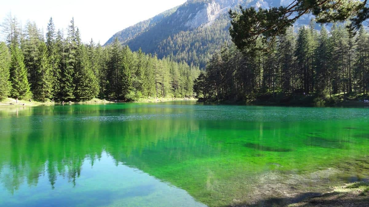 Grüner See Tragöß