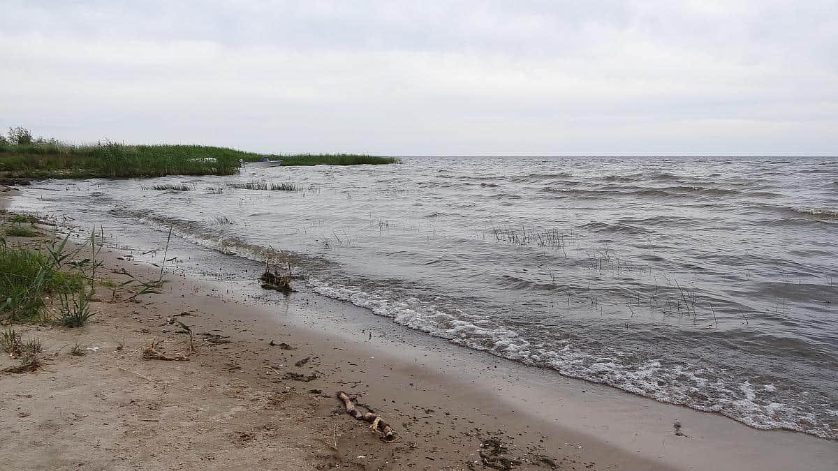 Ufer des Peipussees - Roadtrip durchs Baltikum