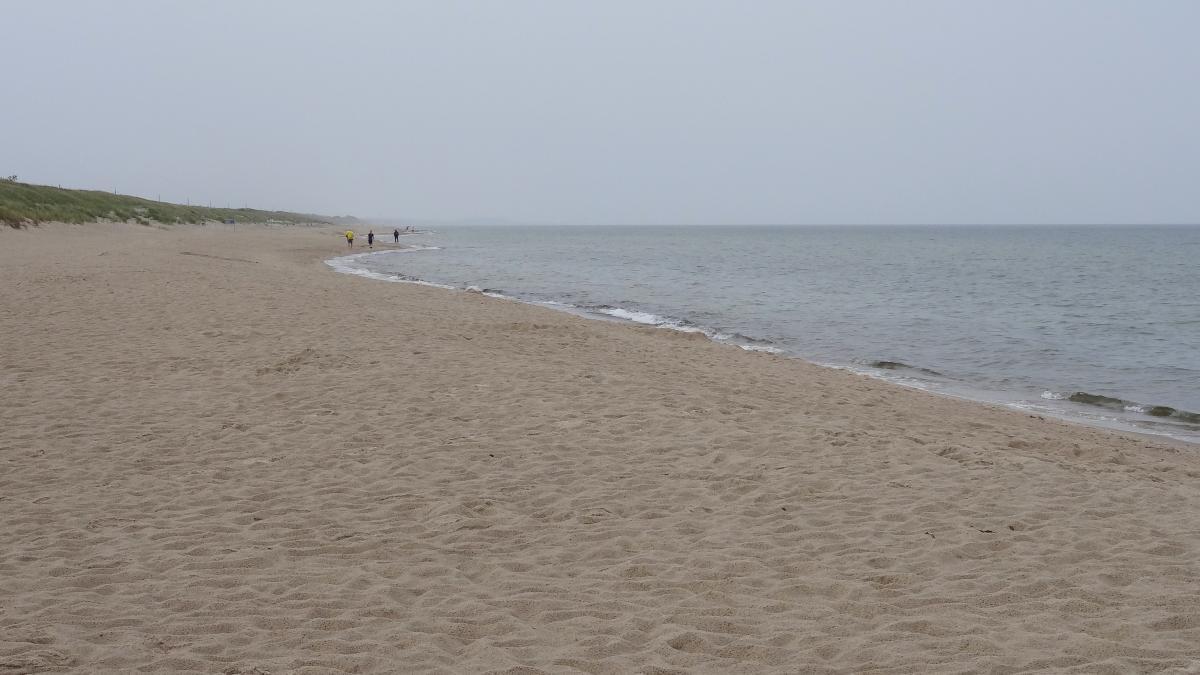 Sandstrand auf der Kurischen Nehrung