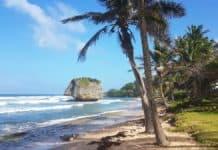 Bathsheba Beach - Ein Tag auf Barbados