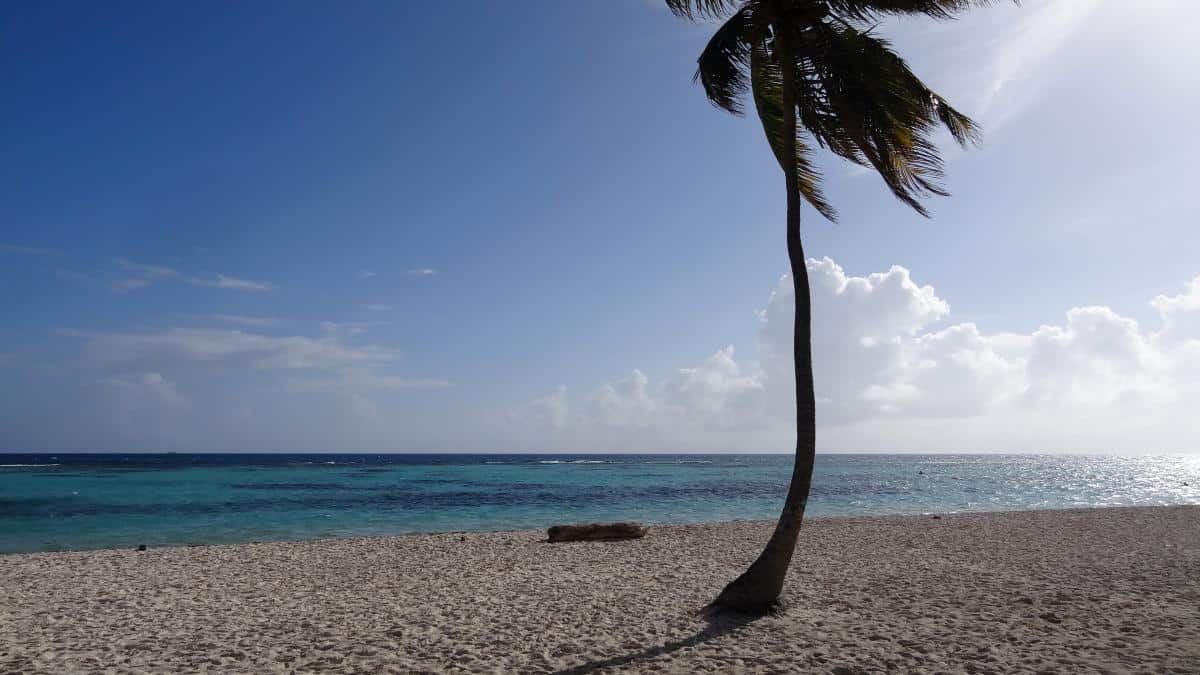 Canto de la Playa, Isla Saona