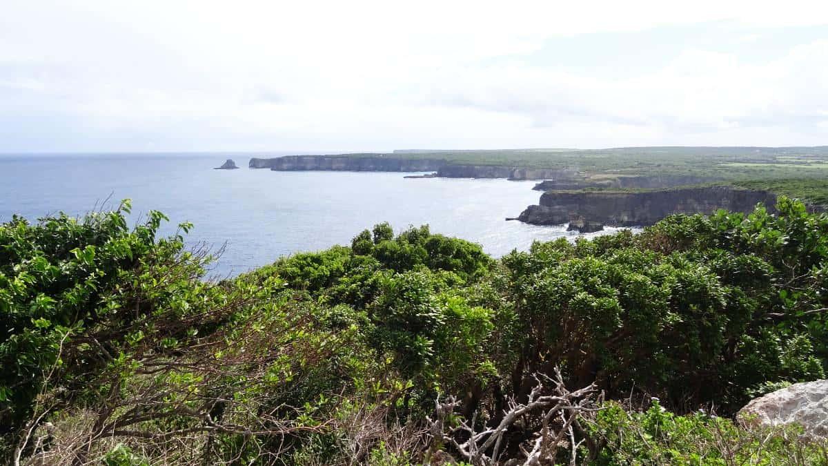 Pointe de la Grande Vigie, Grande-Terre, Guadeloupe