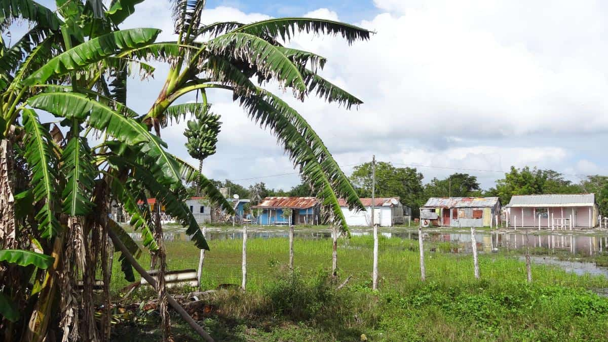 Mano Juan Zentrum, Isla Saona