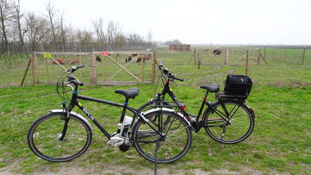 E-Bikes im Nationalpark