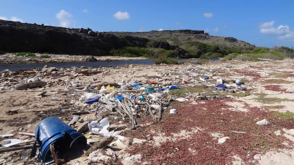 Müll am Strand auf Curaçao