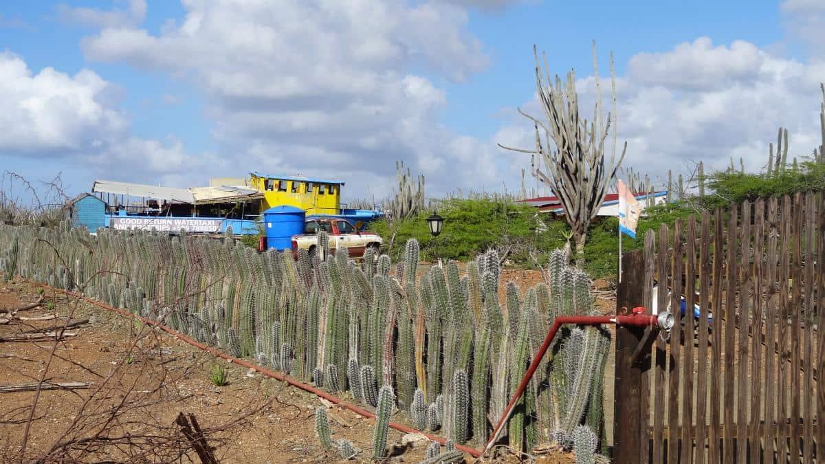 Haus im Outback auf Bonaire