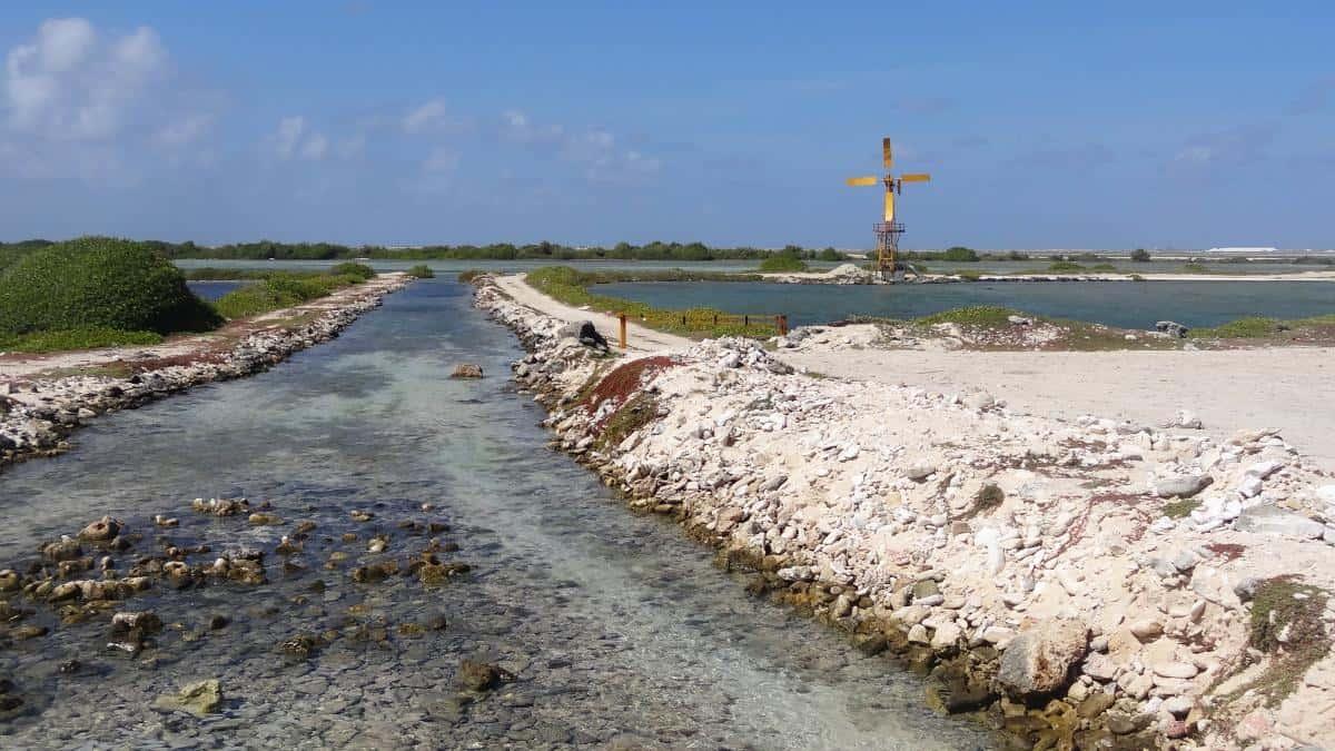 Saline auf Bonaire