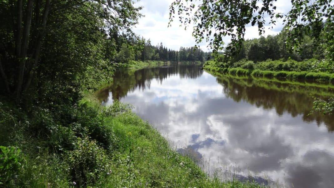 Der Gauja-Nationalpark: Ein Ausflug ins ursprüngliche Lettland