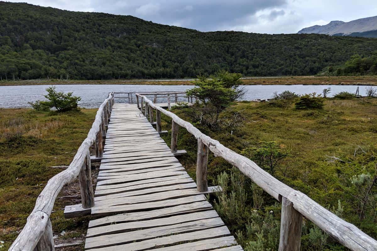 Holzsteg im Moor der Laguna Negra