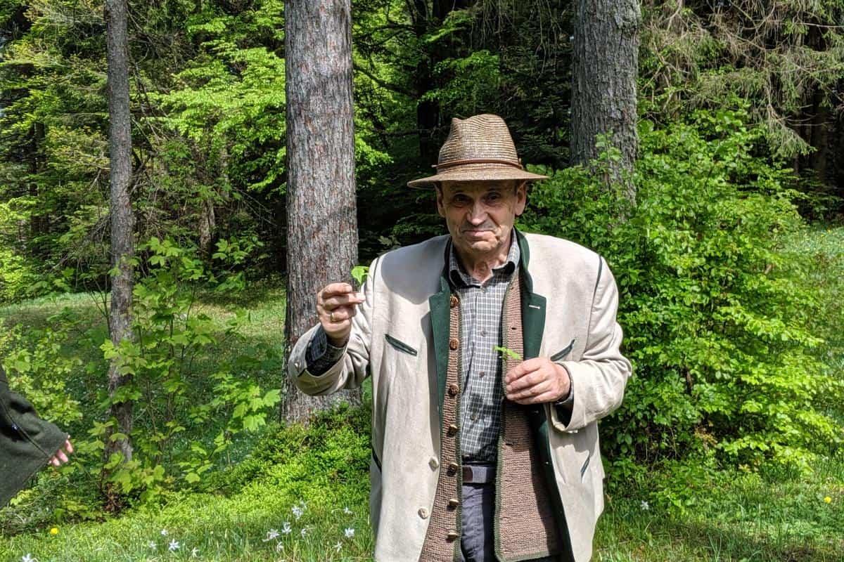 Waldpädagoge Fritz erklärt und die Pflanzenwelt im Almtal
