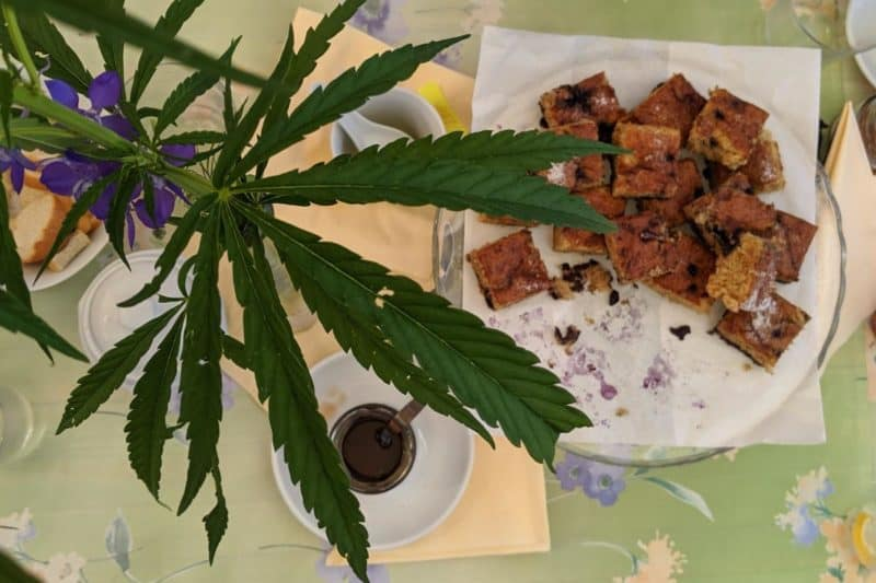 Einkorn-Heidelbeer-Kuchen und eine Tischdekoration aus Industriehanfblättern