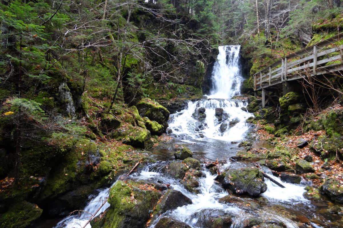 Dickson Falls im Fundy-Nationalpark