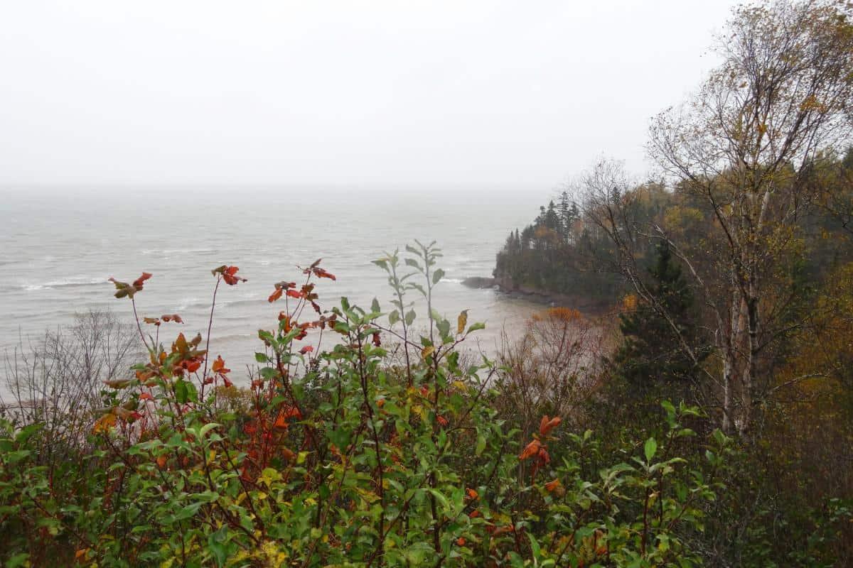 Verregnete Herring Cove