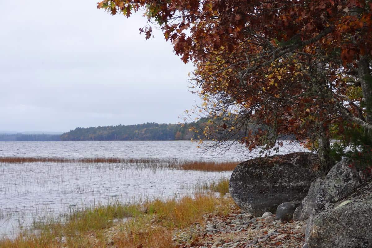 Blick über den Kejimkujik Lake