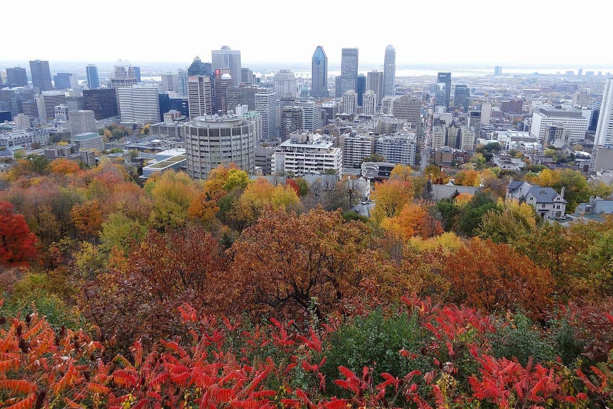 Herbstliche Aussicht über Montreal vom Mont Royal