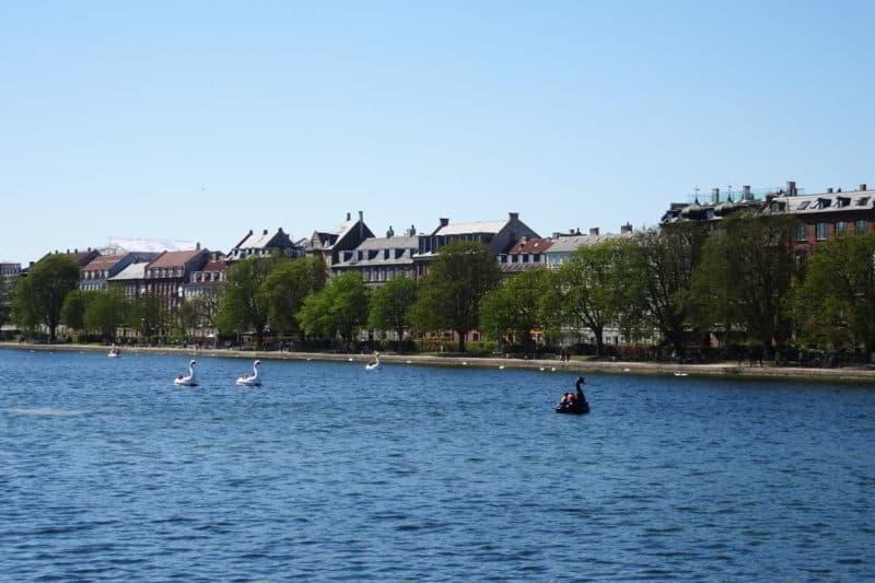 Sehenswürdigkeit in Kopenhagen: Kopenhagener Seen Søerne