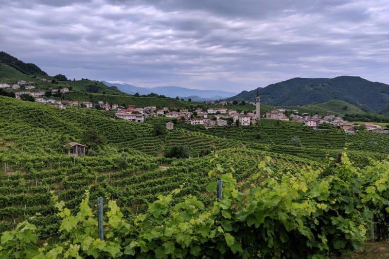 Blick über die Weinberge und das kleine Örtchen Guia an der Proseccostraße