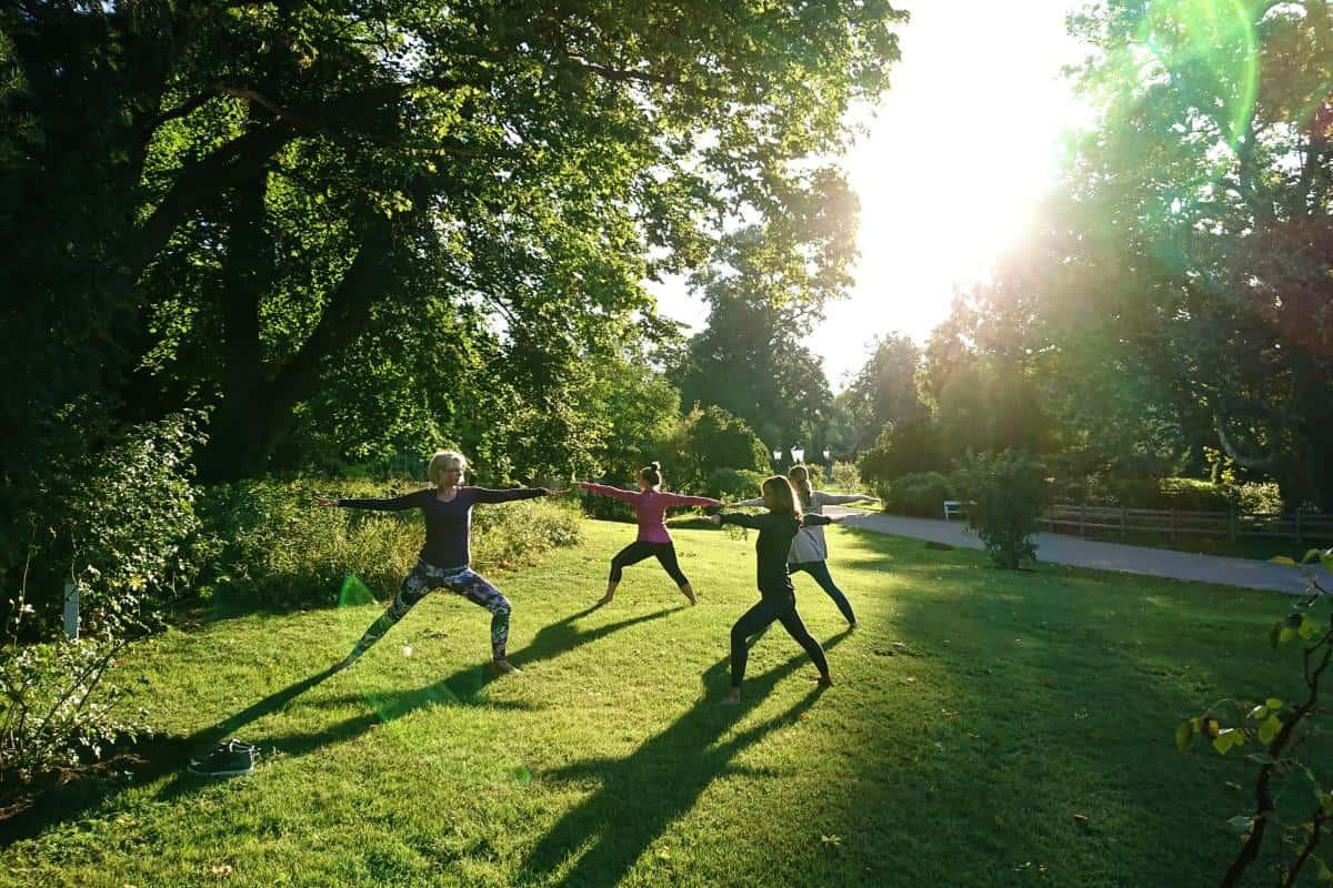 Sonniger Park während einer Yogaübung